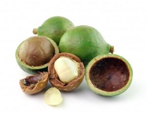 Macadamia oil